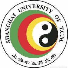 Logo Shangai